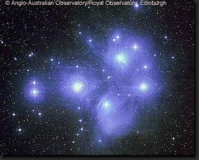 Regulus Star